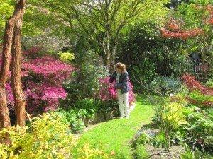 jardin ridrel